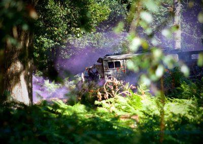 Truck pic - Smoke - Ferns